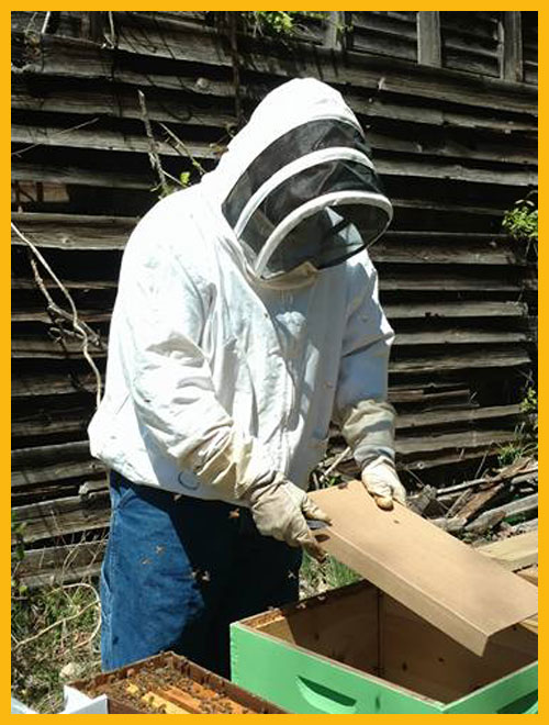 Protective Clothing, Veils, jackets, and gloves to protect the beekeeper