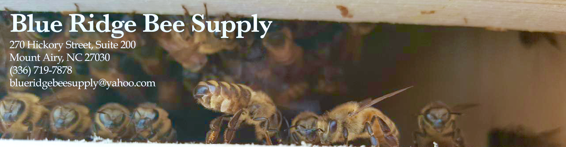 Blue Ridge Bee Supply